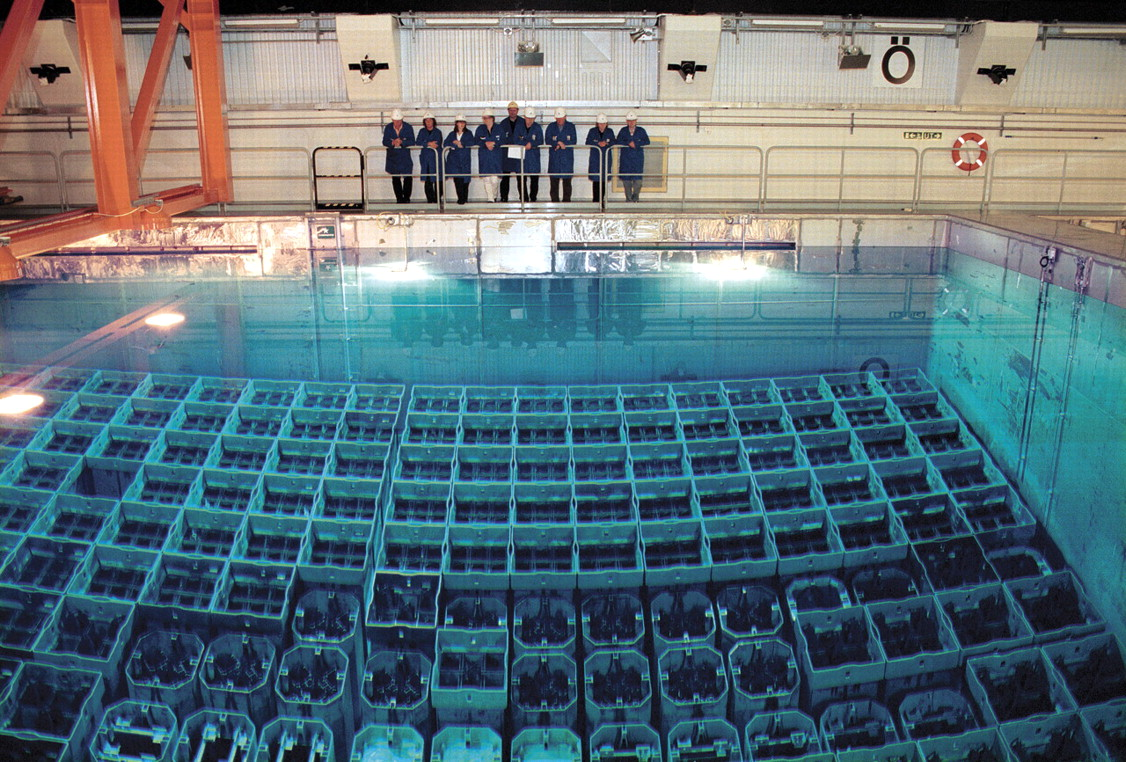Nuclear fuel for Pool design reactor